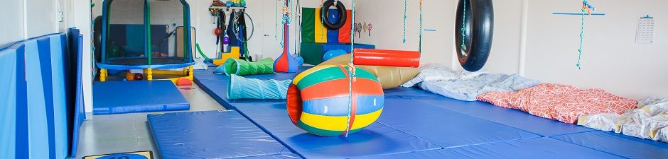 Pediatric OT Large Sensory Gym